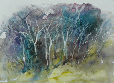 gallery/thicket- jan thomson-watercolour m